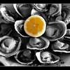 At an oysteria. Isla Grande de Chiloé, Chile