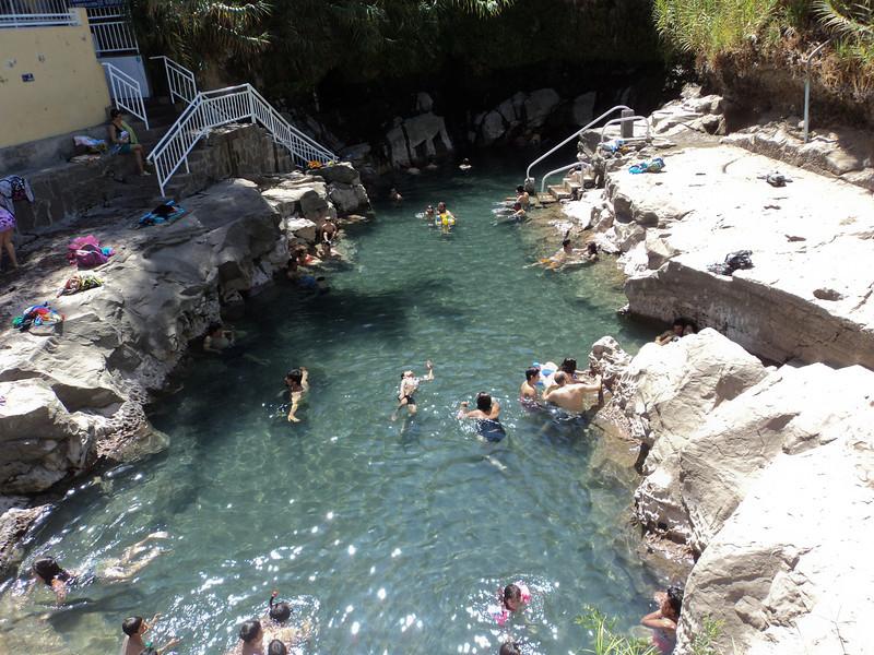 pica natural pool