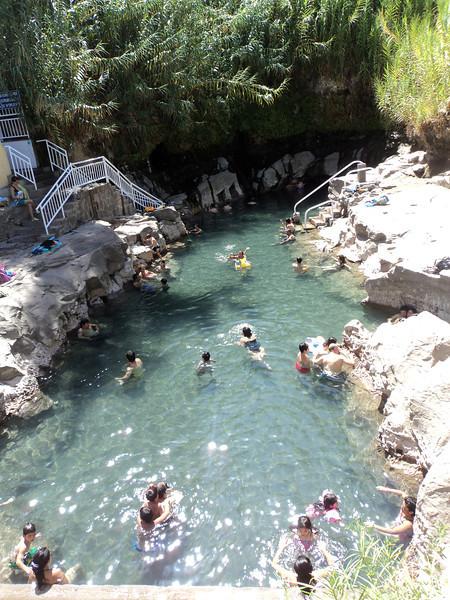 pica natural pool vertical