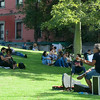 Music on the Lawn, Plaza Francia, Buenos Aires