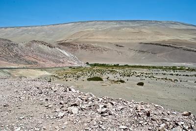 Iquique to Arica , geoglyphen