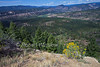 View from causway, Chimney Rock Archaeological Area and National Historic Site, San Juan National Forest, Archuleta County, Colorado, Yellow shurb is Rabbitbrush