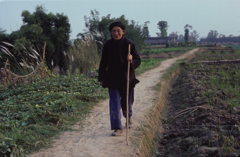 Older woman on a path behind our college