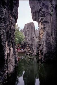 Stenen woud Lunan