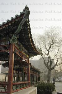 BeijingD1-019B