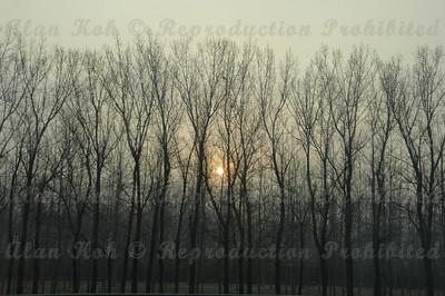 BeijingD1-006