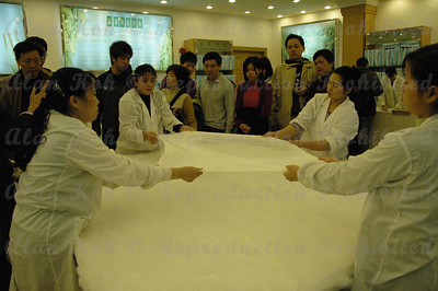 ShanghaiD6-033