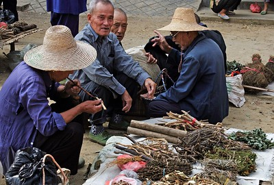 Around Yangshou: Fuli village market. These gentlemen are selling natural herbs and medicines