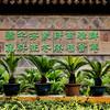 Wall in garden, Souzhou