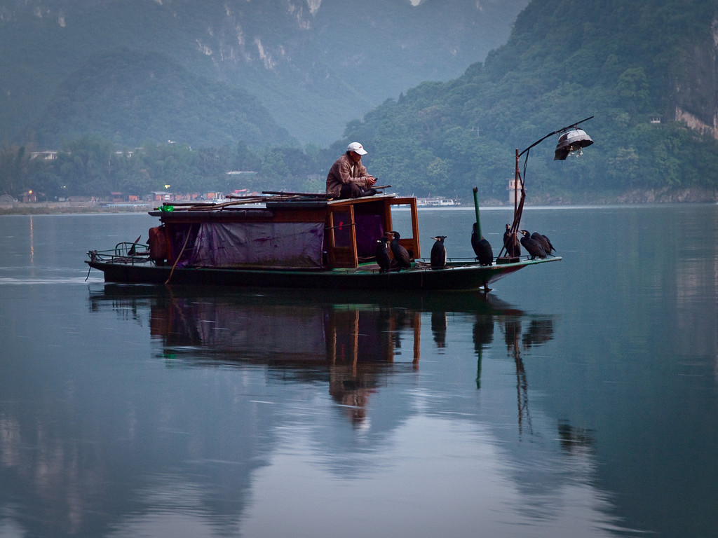 Waiting for the evening fishing to start. Not quite the traditional clothing but the cormorants are real enough. Shame we couldn't wait and see the fun... we had planes to catch! <br /> <br /> (many more pictures by clicking on > China 2010  above - if you have a free half hour or so)