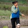? planting Ma'tang