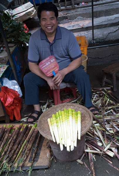 Bamboo Shoots for Sale