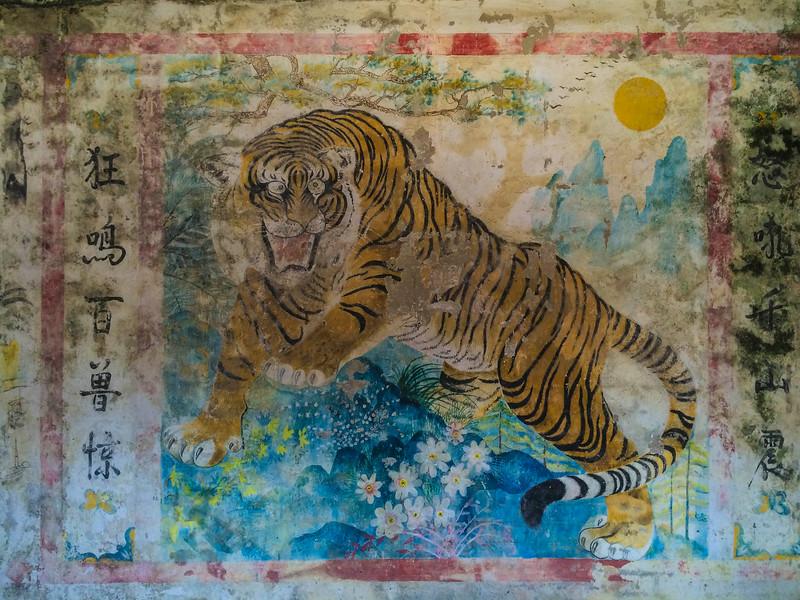 Temple tiger