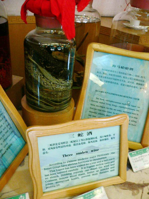 Three Snake Wine - Click on Original size to read the sign, it's very interesting