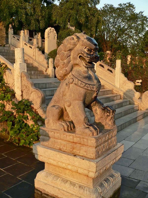 steps at the temple...you can see his paw and nose are smooth from where people rub him for luck