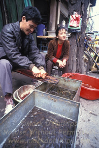 Selling live fish and eels in the marketplace in Fengjie, China
