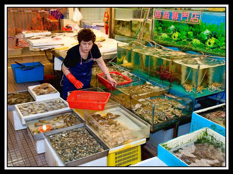 Live fish tanks...