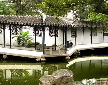 Brookside Walk ~ Suzhou1
