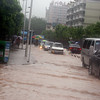 Flooded Longhua