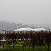 """Our drive-by of the """"Bird's Nest,"""" the main Olympic stadium"""