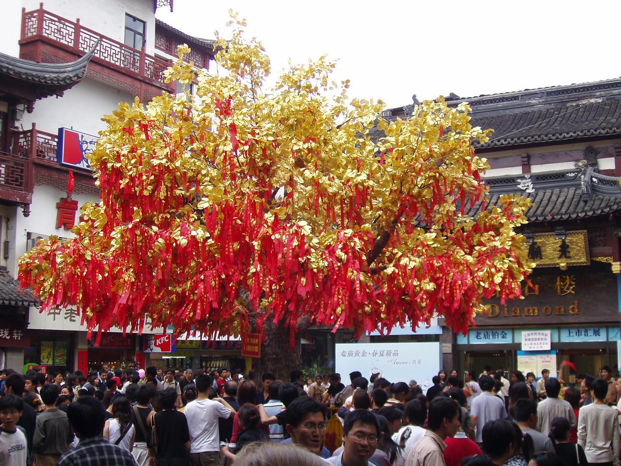 Money Fortune Tree.