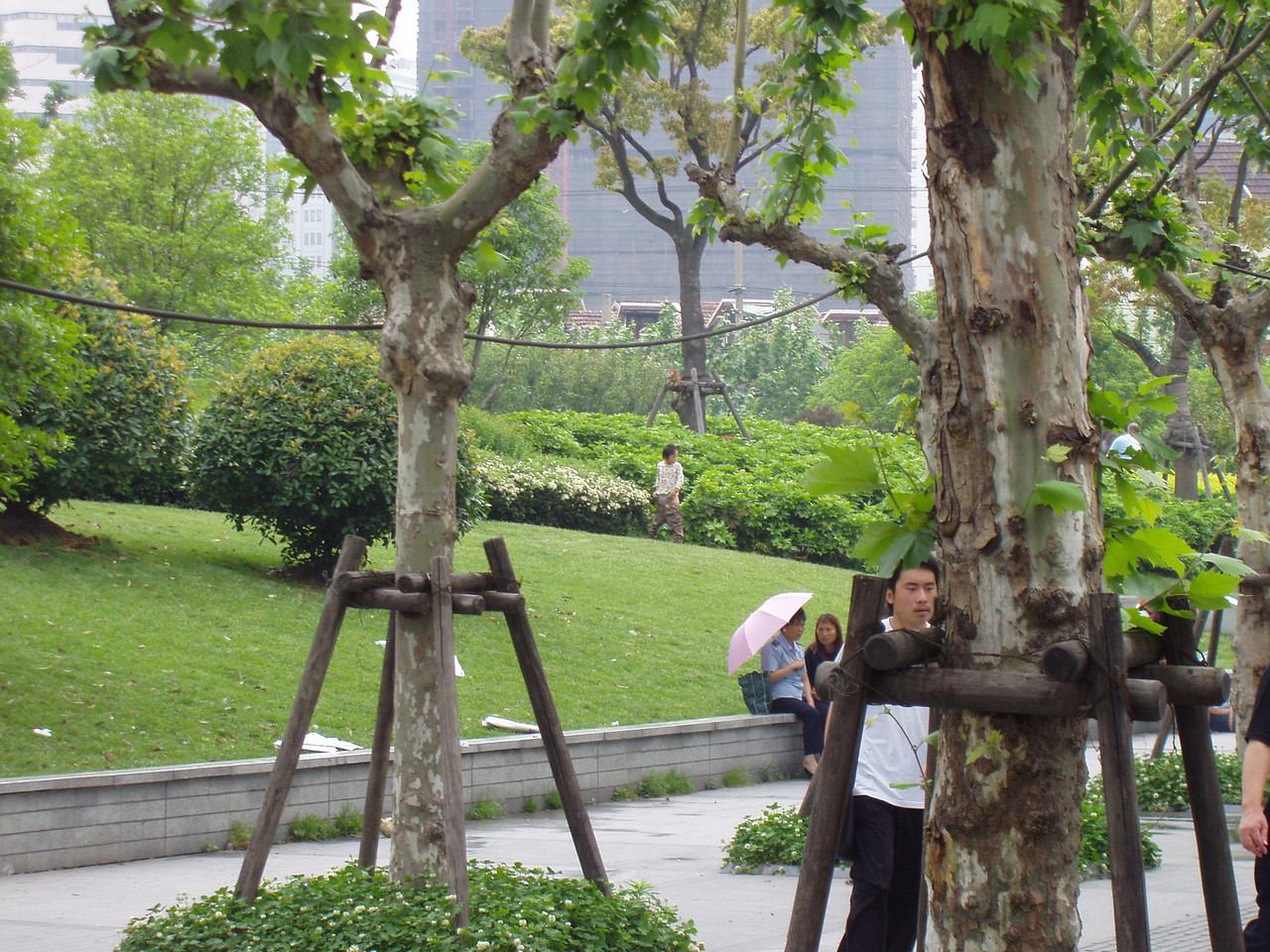 Yup, this would be a kid peeing in the bushes in the middle of downtown Shanghai.