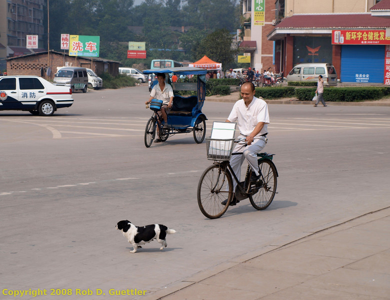 Dog, bicycle and pedicab on roundabout intersection near Old Village. Longchang, Sichuan Province, P. R. China. China Trip 30 Aug to 07 Sep 2008.