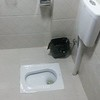 Typical eastern toilet at The Farm