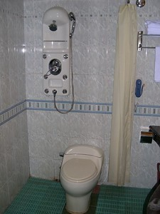 Is this some fancy new bidet?  Or just a novel way to eliminate the need for a bathtub?  Hell, if they had a mirror on the left wall, I could shit, shower & shave without moving!