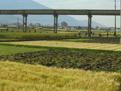 Farming plots around Dali.