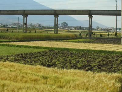 Farming plots around Dali.