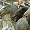 Life-size Terra Cotta horses on the excavation site in Beijing