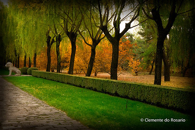Sacred Path of Ming Tombs. It is straight path flanked by stone statues of ancient government officials and animals