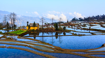 Rice terraces at Duo Yi Shu