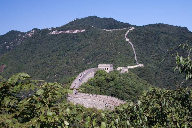 China-1151