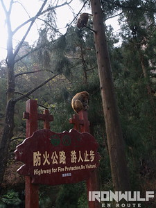 Wulingyuan, Zhangjiajie National Forest Park