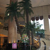 Lobby of Yucca Hotel