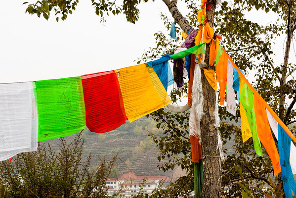 Prayer flags are cloths printed with Tibetan Buddhist scriptures, deities, and symbols. A practitioner will hang her (or his) flags on a high place, putting them up in the wind and gathering the blessing of both being near the holy ground of the monastery (if the flags are hung near one) and the place god for the area. The practitioner believes that the wind carries these prayers on her behalf to the Buddha, who counts it as merit she has earned.<br /> <br /> Traditionally, prayer flags were only made in 5 colors which represented the 5 elements: white (air), blue (water), yellow (metal/gold), green (earth), and red (fire). Today, commercialization has created prayers flags of other colors.