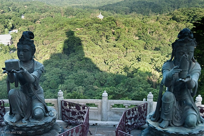 in Buddha's shadow