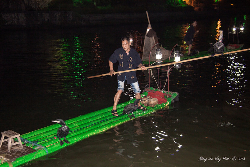 Ching-2671<br /> Cormorant Fishing is a traditional fishing method that has been used since 960 AD. Fishing with trained cormorants is still used today mainly for the tourism industry.
