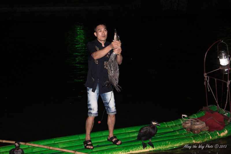 China-2673<br /> Cormorant Fishing is a traditional fishing method that has been used since 960 AD. Fishing with trained cormorants is still used today mainly for the tourism industry.