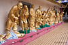 China-4101<br /> When you get to the Ten Thousand Buddha Temple you are met by these Buddha Statutes at the Ten Thousand Buddha Monastery in Sha Tin, Hong Kong.