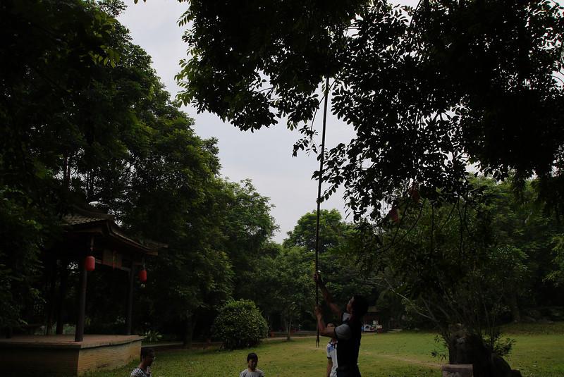 Photo of Shantou Tour
