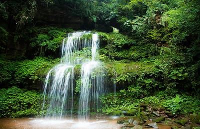 [ Bifeng Panda Reserve-_WP_0803-]_