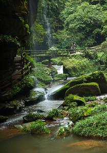 [ Bifeng Panda Reserve-_WP_0779-]_
