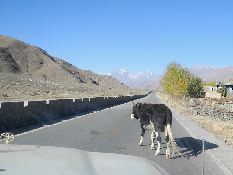 Tibet traffic