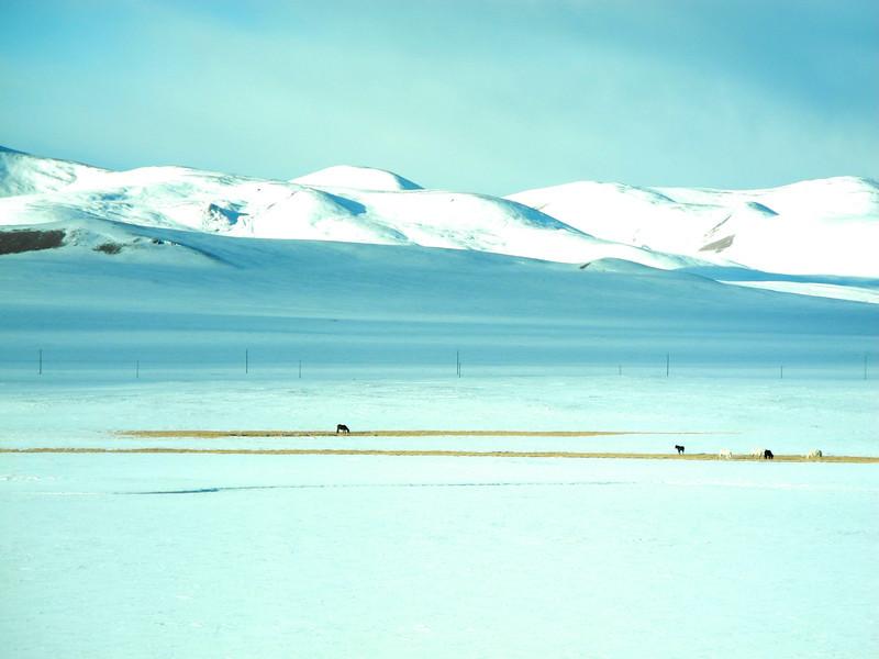 Higher altitudes again bring winter. 15,000 ft