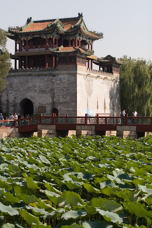 China_NGingold_38