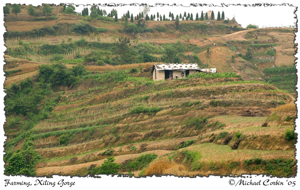 Farming, Xiling Gorge