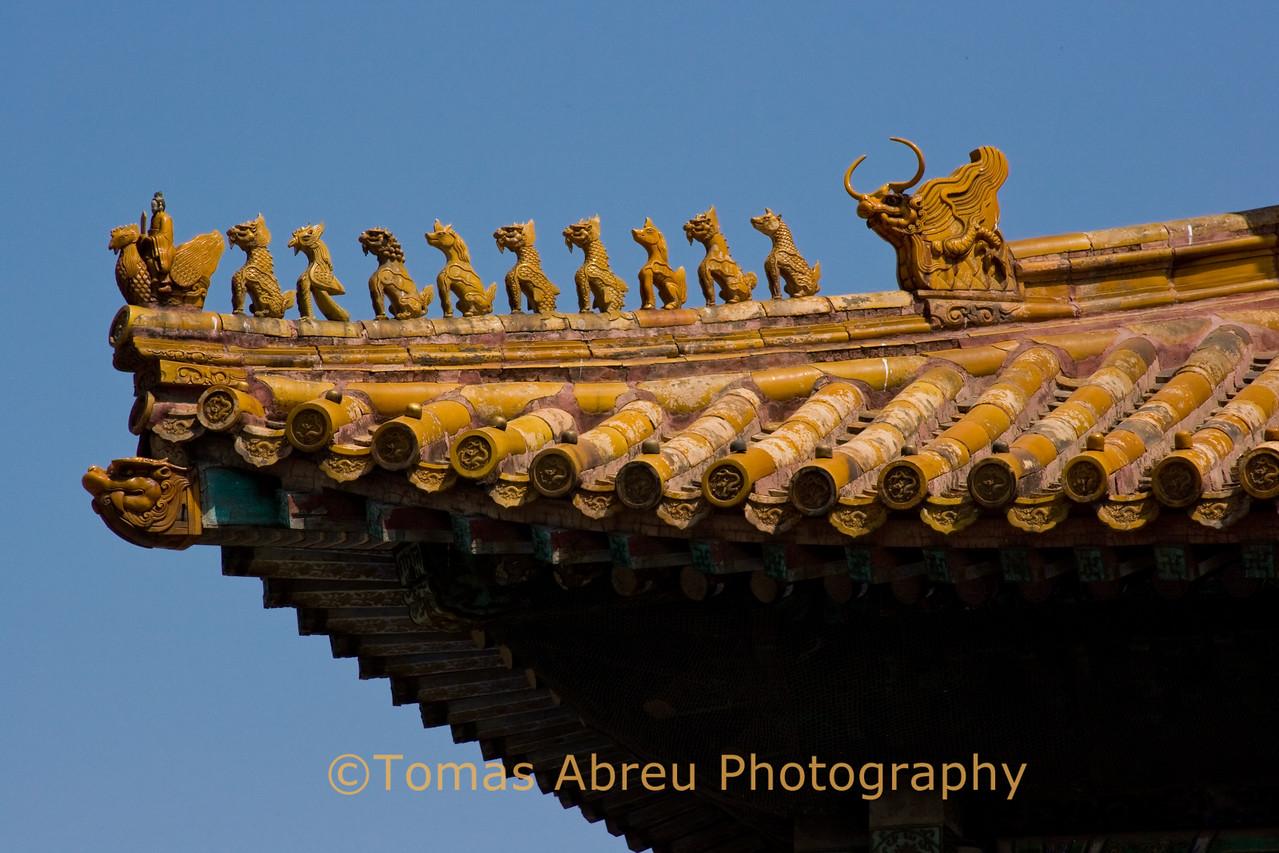 Roof Detail, Forbidden City, Beijing